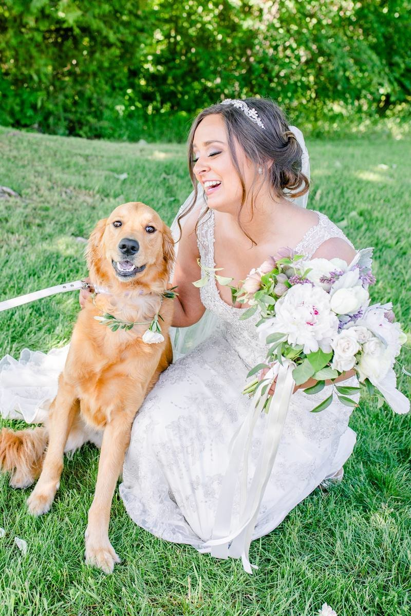 dog-at-wedding-ciccone-vineyard-wedding-traverse-city_0004