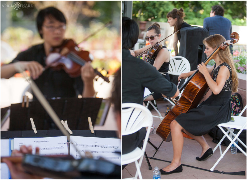Fancy Wedding String Quartet Nexus Strings at Denver Botanic Gardens