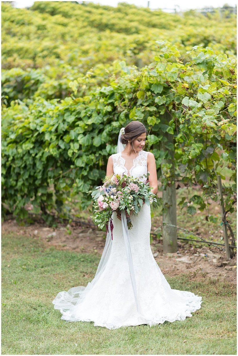 laura-barnes-photo-north-carolina-wedding-photographer-highlands-37-holly-high-vineyard35