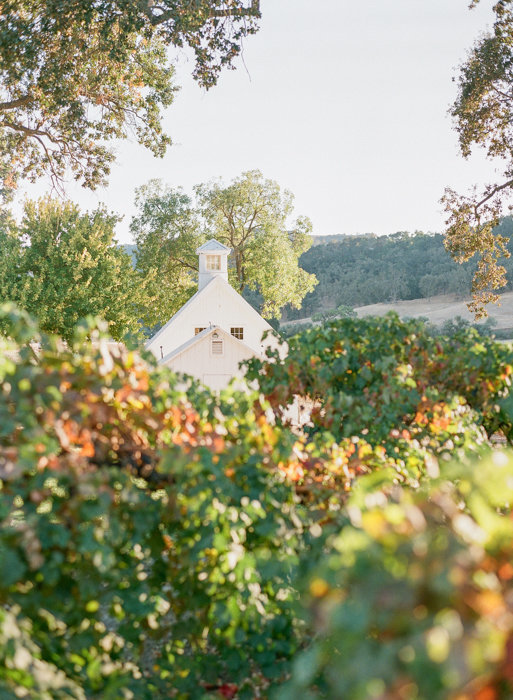 Molly-Carr-Photography-Paris-Film-Photographer-France-Wedding-Photographer-Europe-Destination-Wedding-HammerSky-Vineyards-Paso-Robles-California-Wine-Country-20