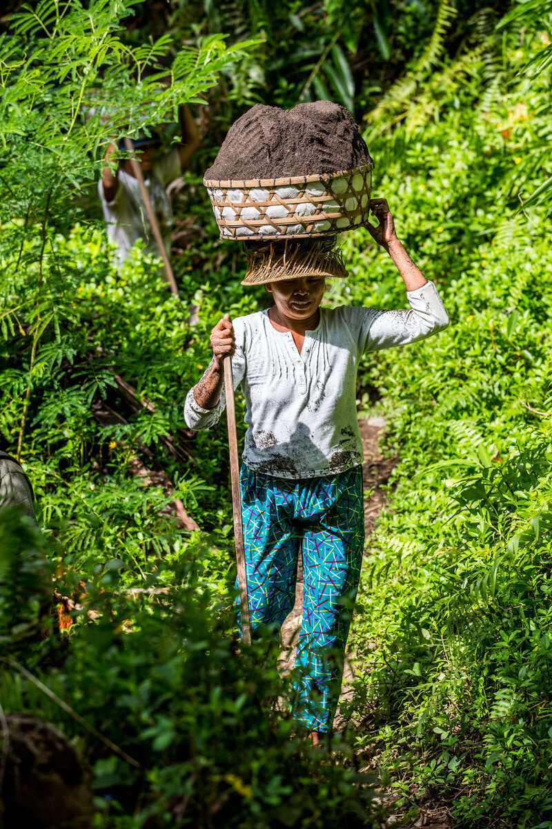 woman carrying dirt in a basket on her head Bali