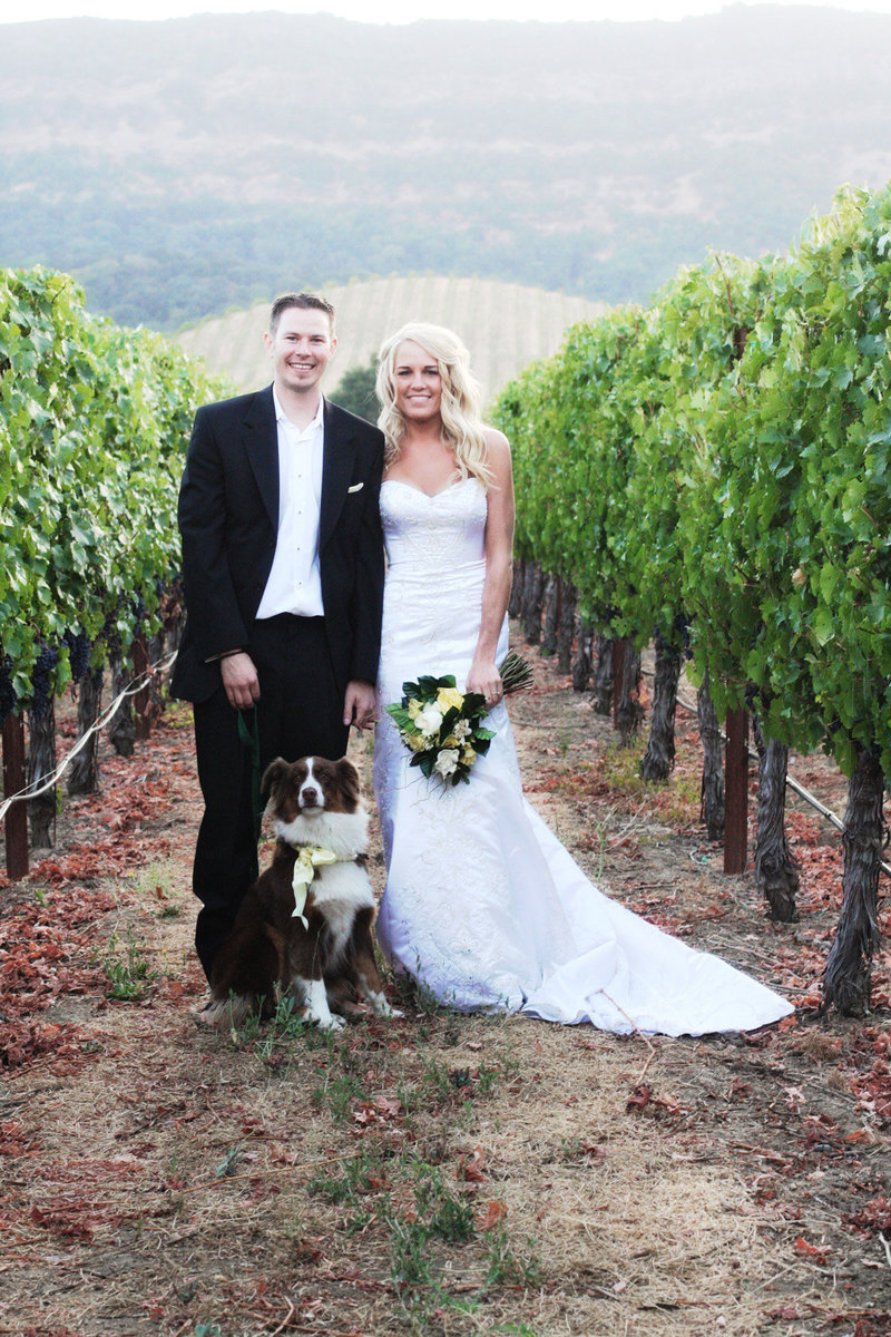 wine country wedding