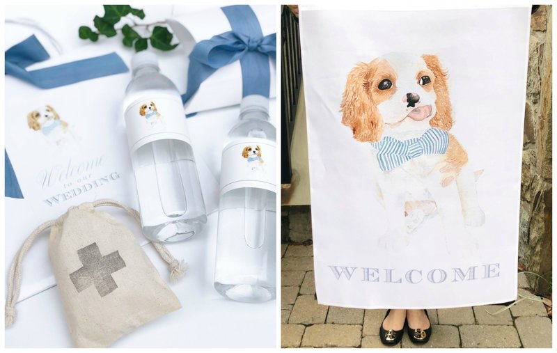 pet-portrait-welcome-gifts-The-Welcoming-District