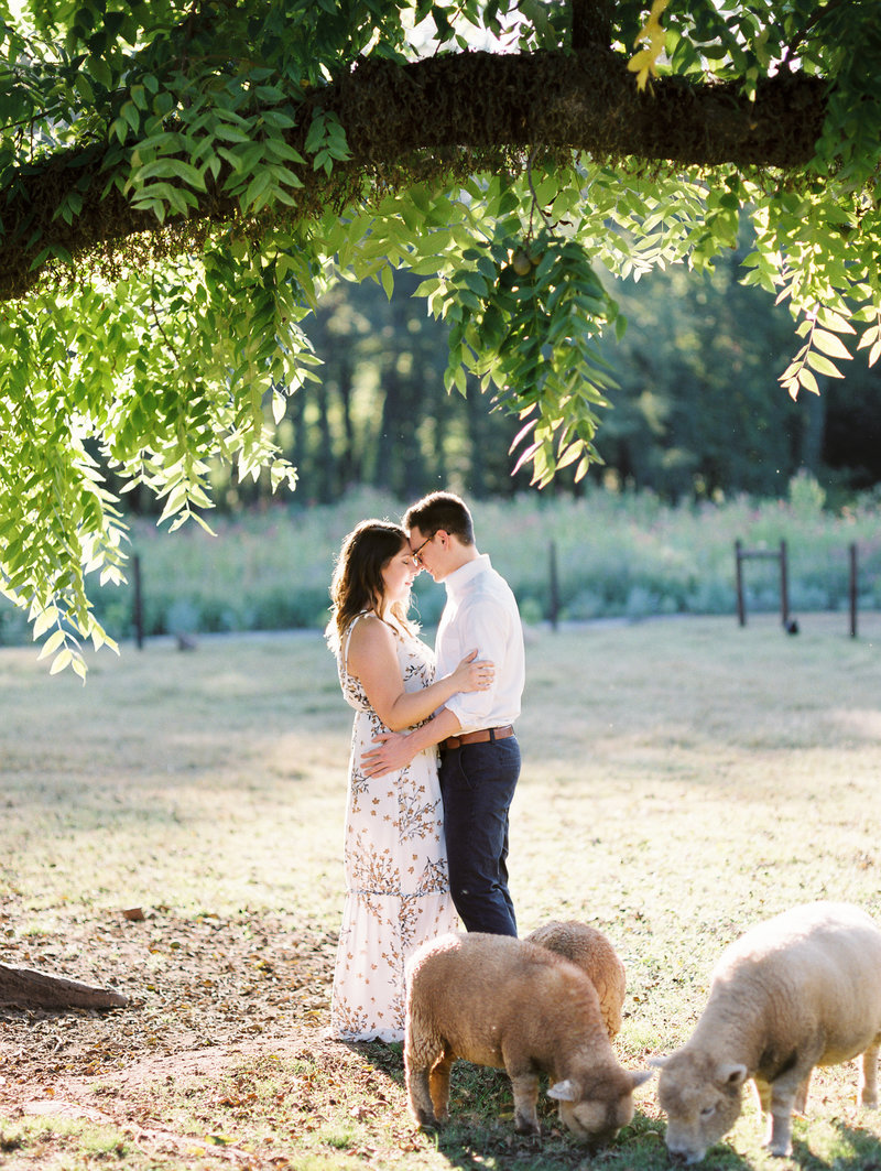 Rachel-Carter-Photography-1818-Farms-Mooresville-Alabama-Engagement-Photographer-104