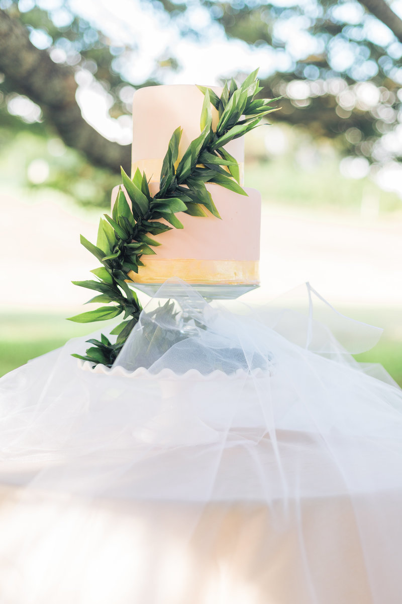 Hawaii wedding Photography pricing