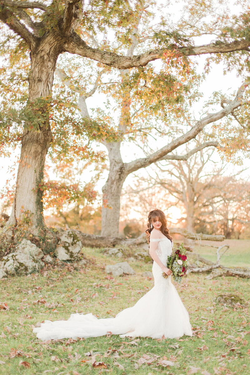 bride standing by trees at great marsh estate wedding in charlottesville virginia by costola photography