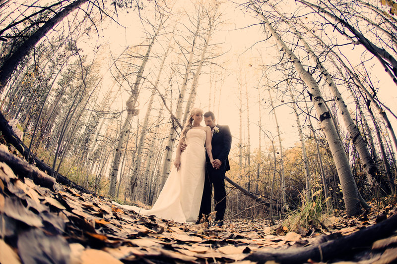 Bride and groom with birch trees