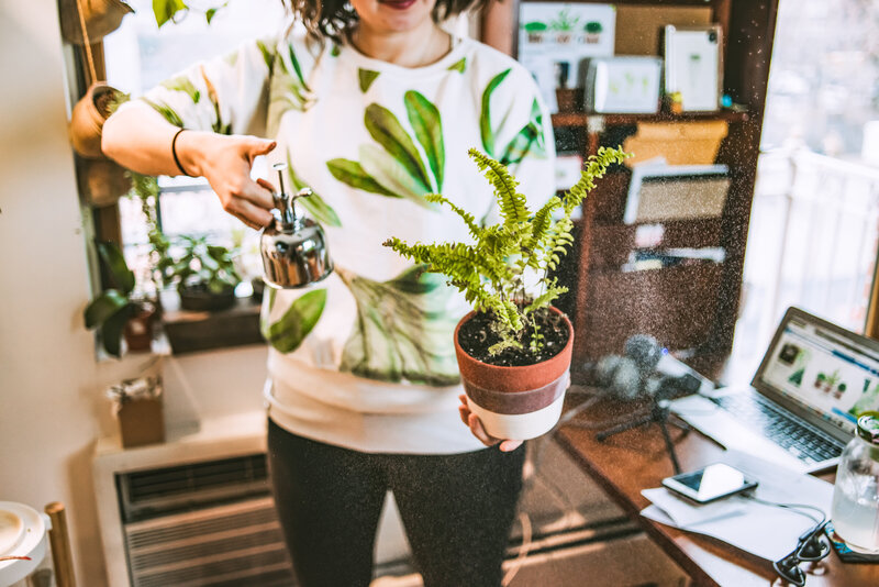 Woman spritzes water on her potted plant