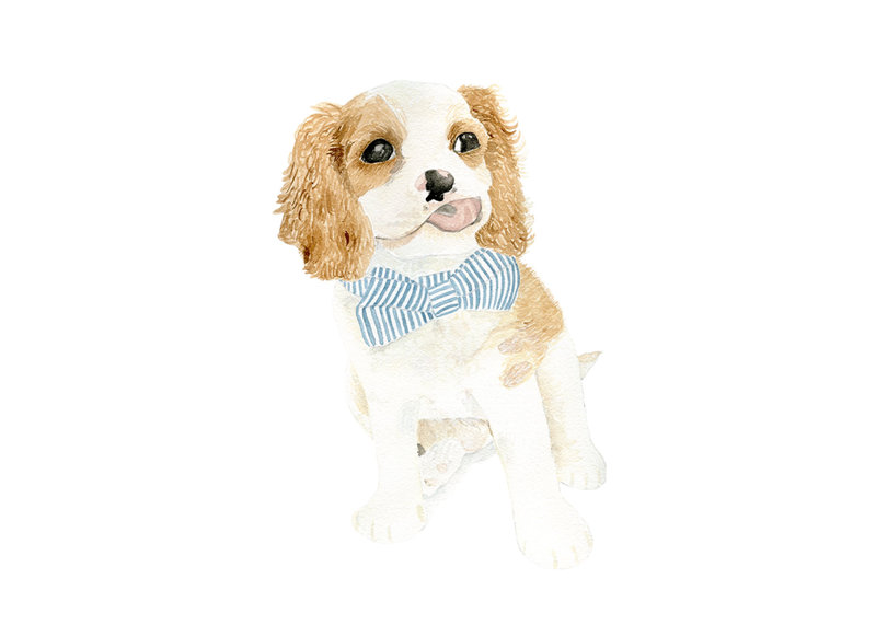 watercolor-pet-portrait-Bingley-H-The-Welcoming-District