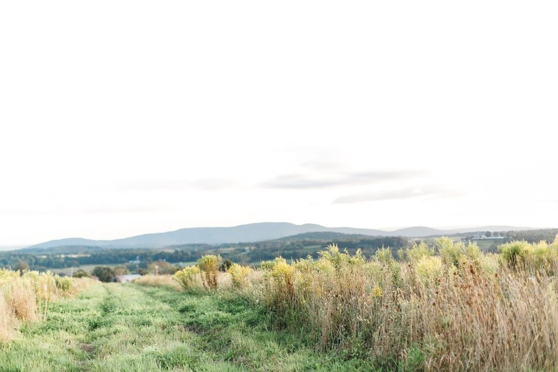 Pennsylvania Countryside Engagement Session by Emi Rose Studio (1)