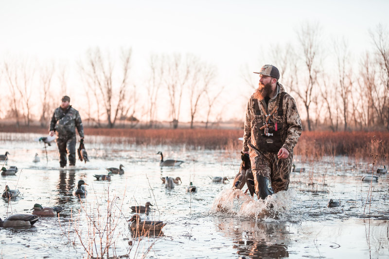 Kansas hunter at fowl plains carrying a mallard in water