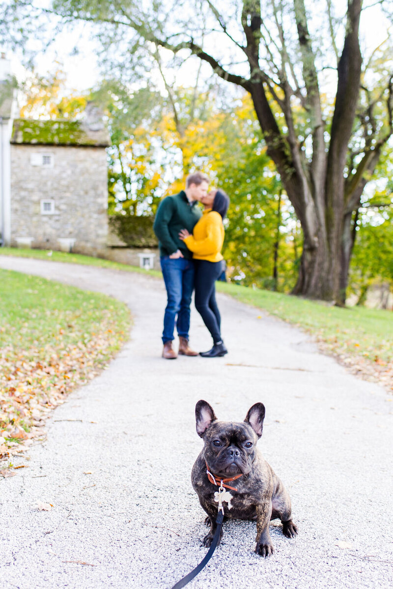 fall-engagement-valley-forge-andrea-krout-photography-20