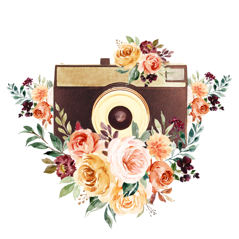 Enchanted Memories Camera Icon