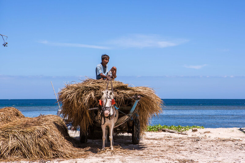 man with horse and cart Gili Air
