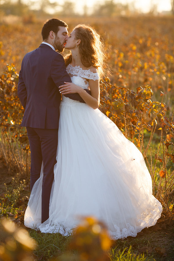 stock photo - bride and groom kissing in field