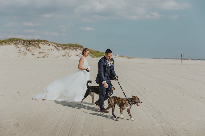 Pawfect for You Pet Care during wedding New York Massachusetts Connecticut New Jersey Pennsylvania27