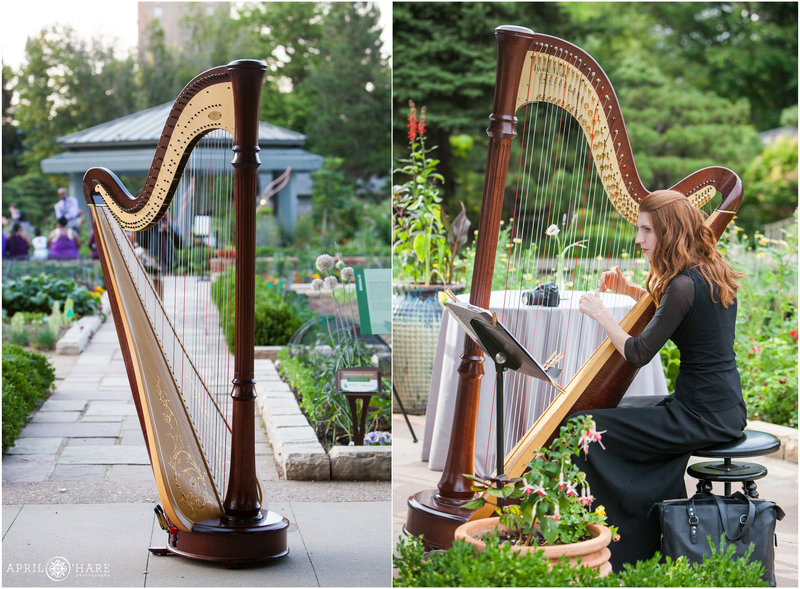 Denver-Colorado-Wedding-Harpist-Mary-Keener-2