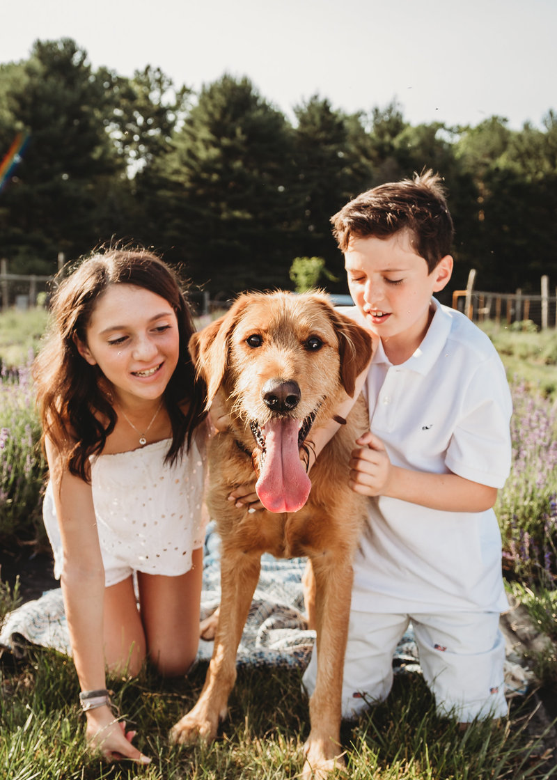 pet and family photographer nj