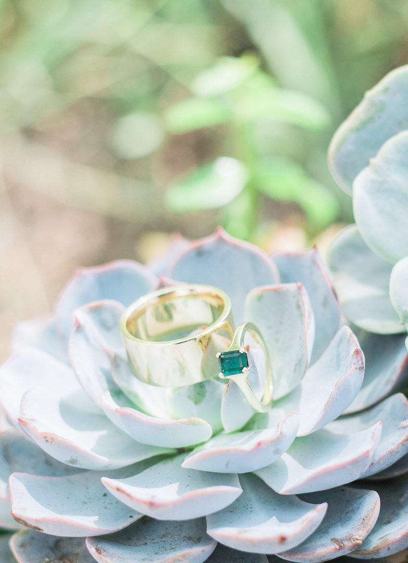 wedding rings on succulent bouquet