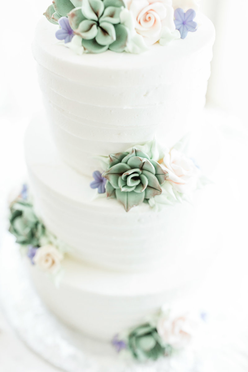 colorado wedding cake with succulent design