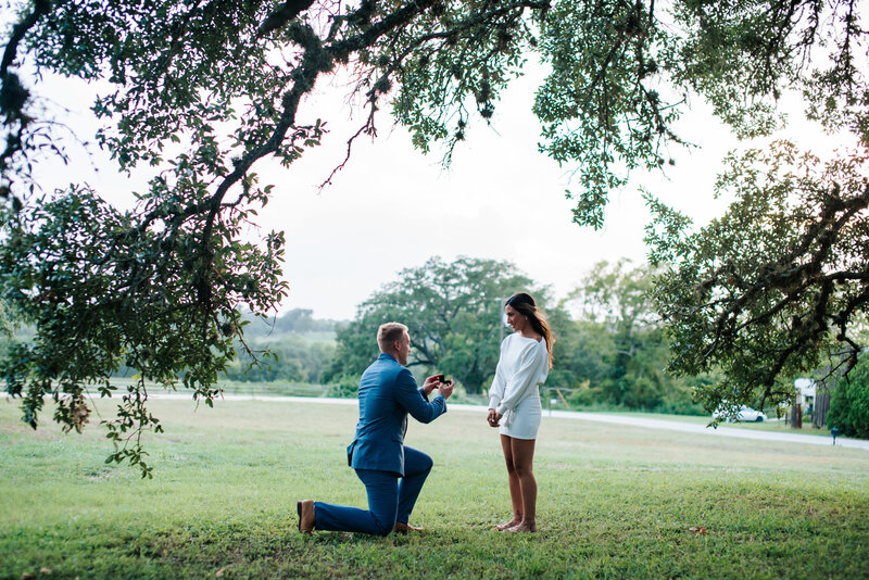 natalya-andrew-proposal_015