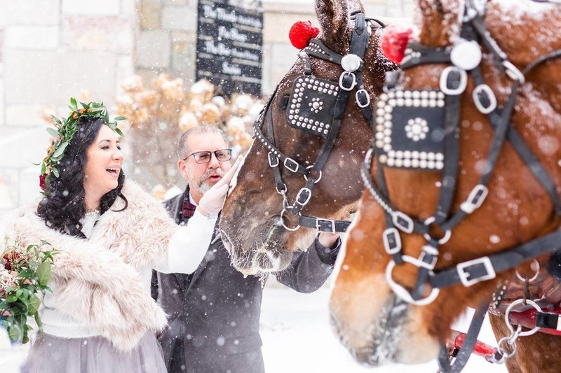crystal-mountain-ski-resort-winter-weddin-horses
