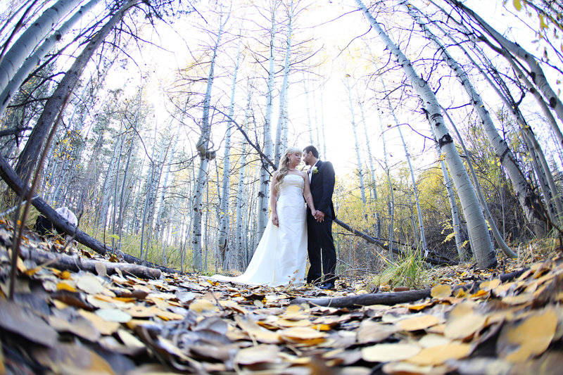 wedding in aspen trees