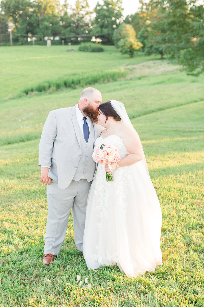 navy-blush-summer-countryside-Bloomingdale-ohio-wedding-1