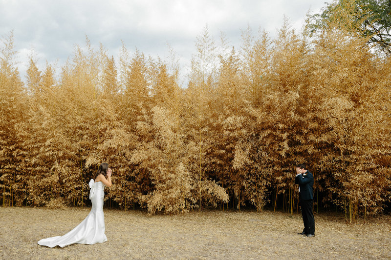brideand groom seeing each other first time wedding look reaction in front of golden plants Matties Austin