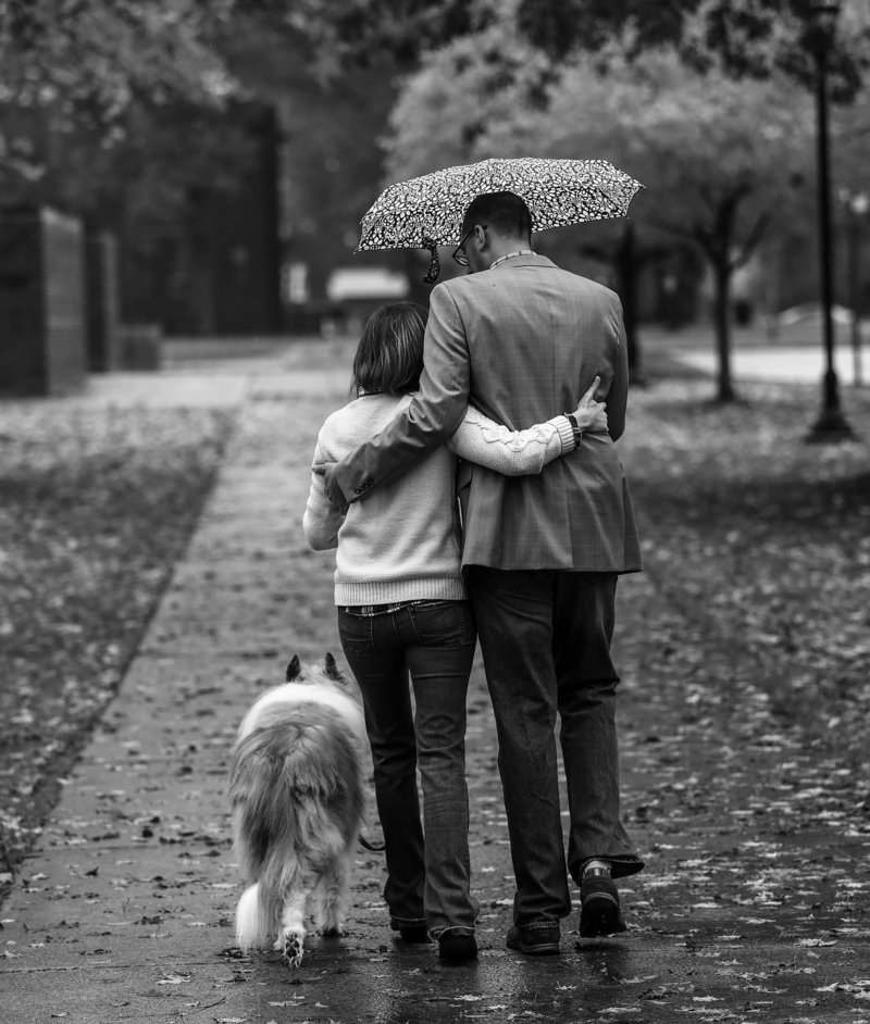 Engaged couple walks with their dog under an umbrella during Edinboro engagement portraits