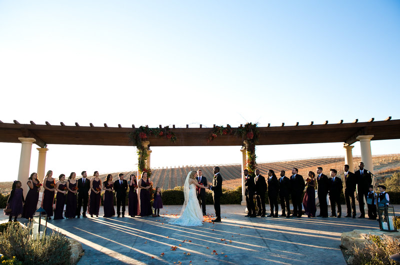Boss Wedding - Ceremony Profile Entire Wedding Party Vineyard