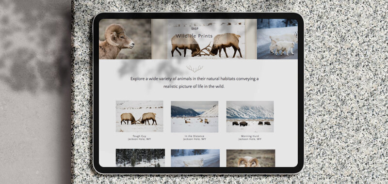 naturebybrogan-website-ipad-showit
