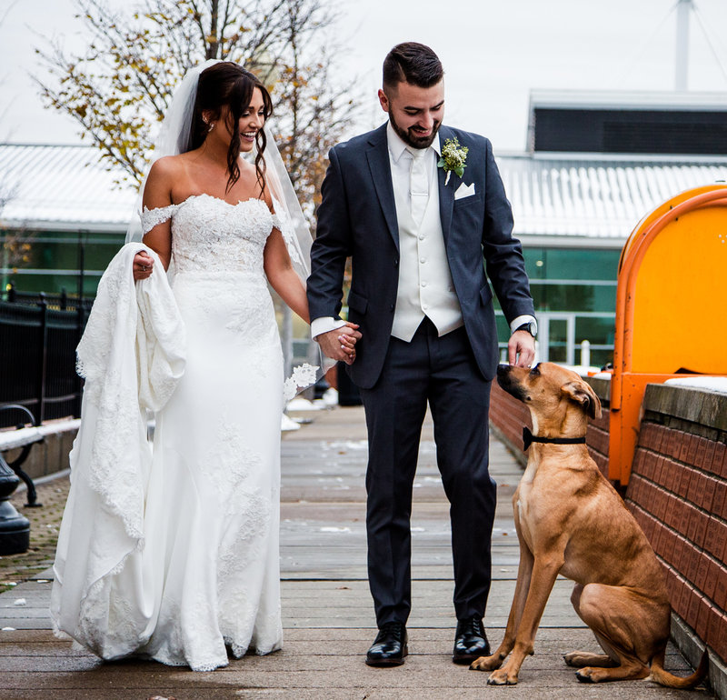 Bride and groom walk with their dog on Dobbins Landing outside Sheraton Bayfront Hotel