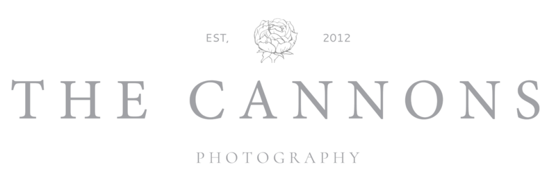 Akron Wedding Photographer Cleveland Wedding Photographer The Cannons Photography