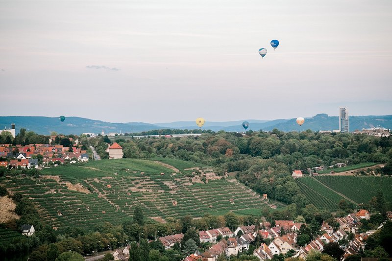 vineyards-and-balloons-2