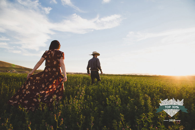 Engagement couple walking through a field into the sunset