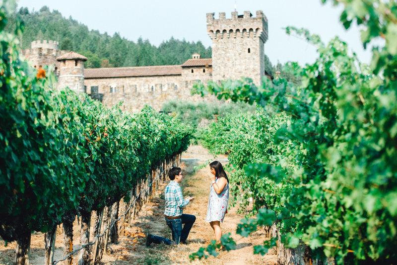 proposal in the vineyards at Castello di Amorosa in Calistoga California