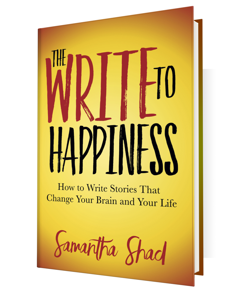 The Write to Happiness 3D Book Jacket