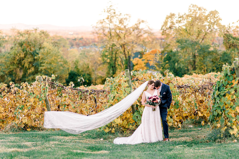 bluemont-vineyard-wedding-virginia-wedding-photographer-virginia-elopement-photographer-blue-ridge-mountains-wedding-dc-wedding-bride-groom-portraits-melissa-durham_01