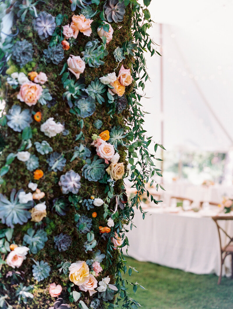 Succulent Flower Wall entrance to wedding reception
