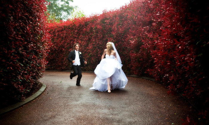 Tamborine Mountain Wedding Gardens