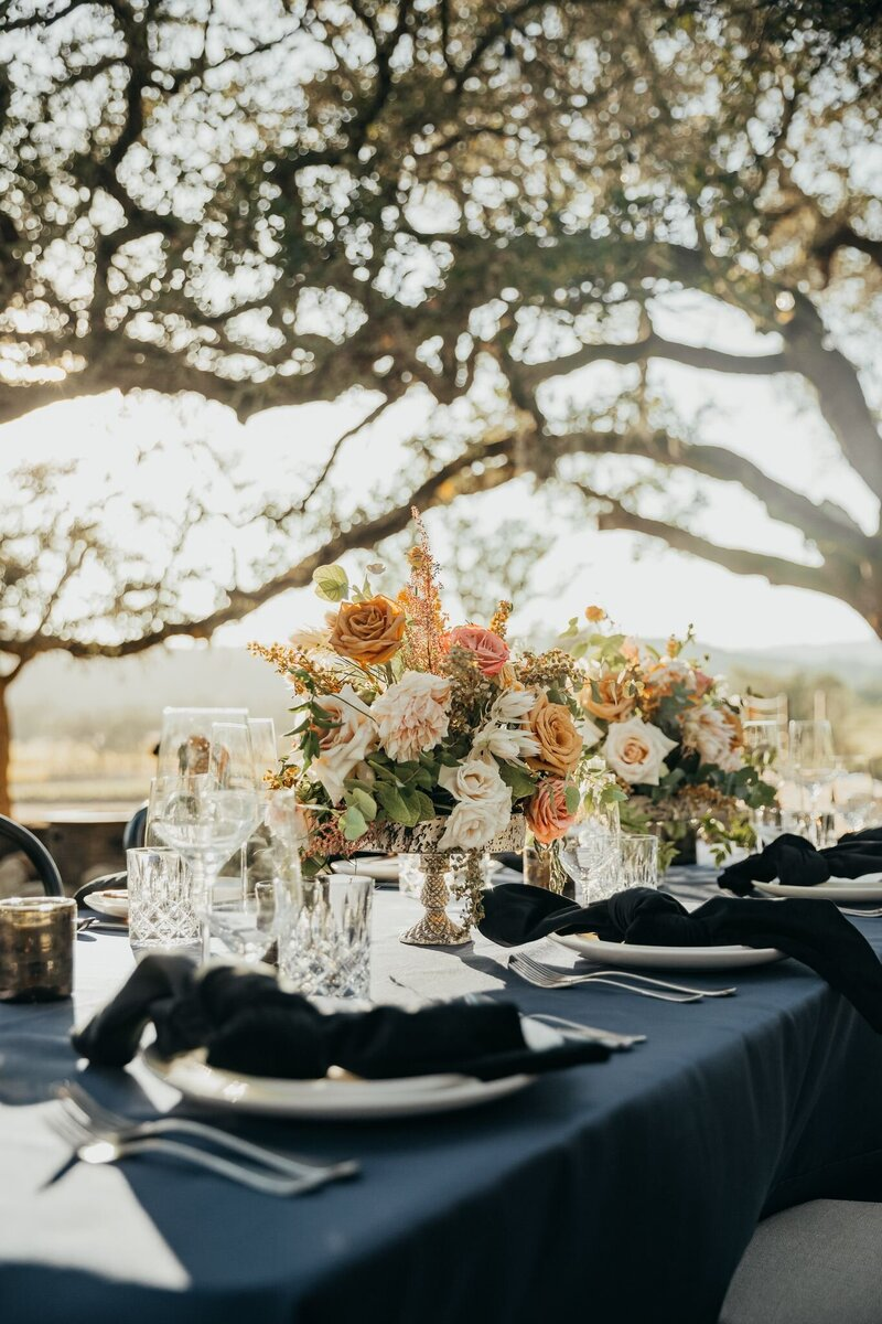 Events-by-gianna-sonoma-county-napa-valley-san-francisco-marin-county-wedding-event-planner-2