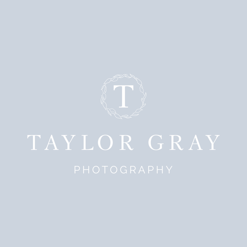 Taylor Gray Photography social media_IG FEED PRIMARY