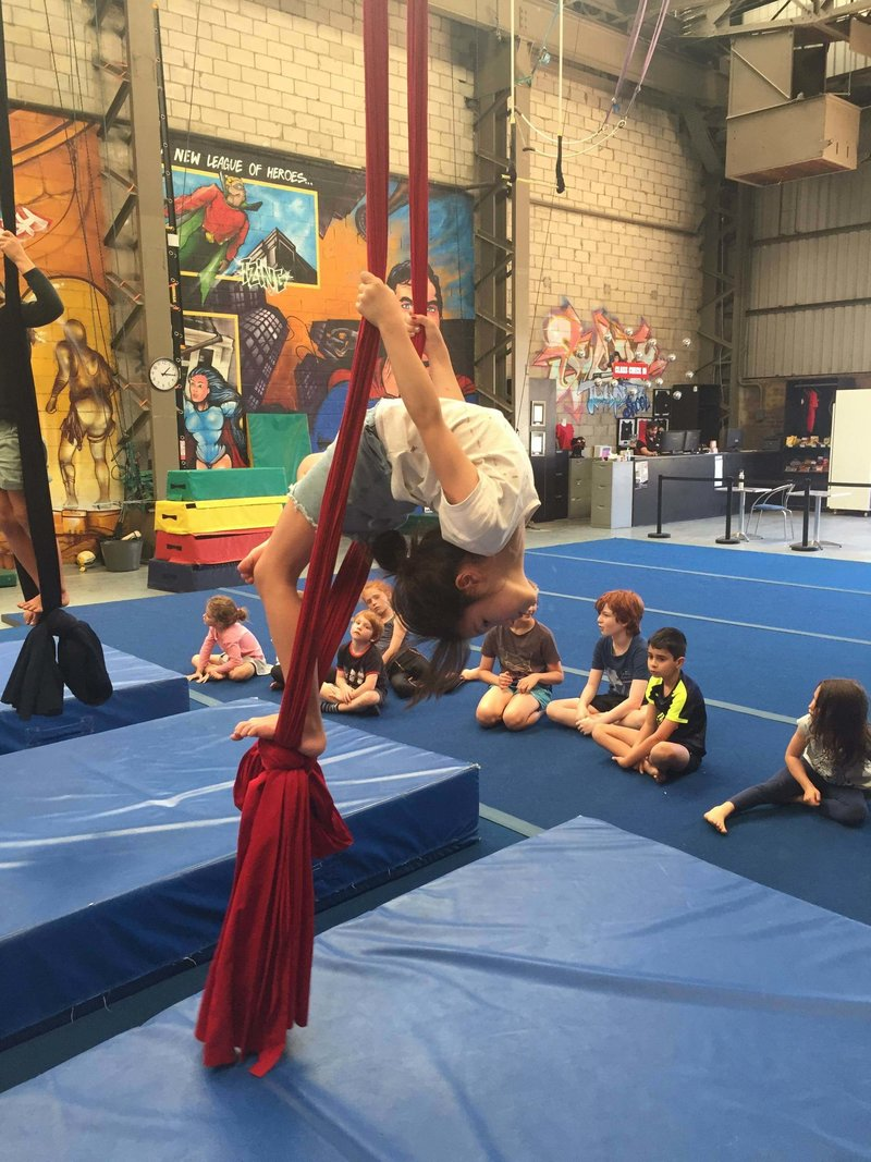 Active Arts_silks_trapeze