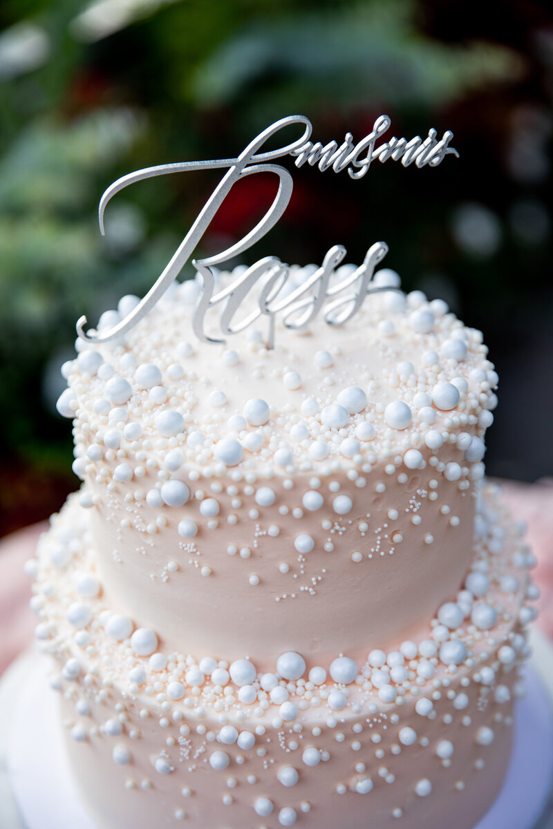 Grand-Rapids-Rooftop-Wedding-cake
