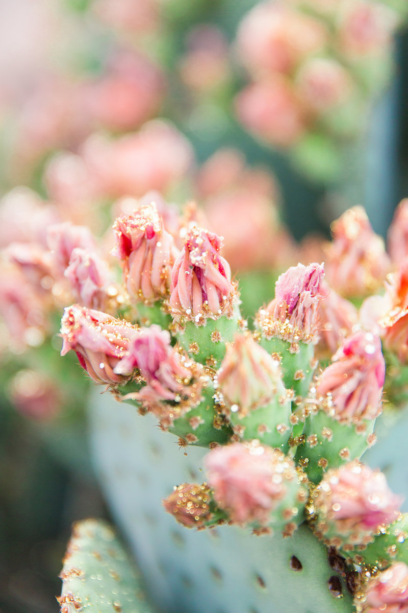 Bunny Ears Prickly Pear Cactus Glitter Buds