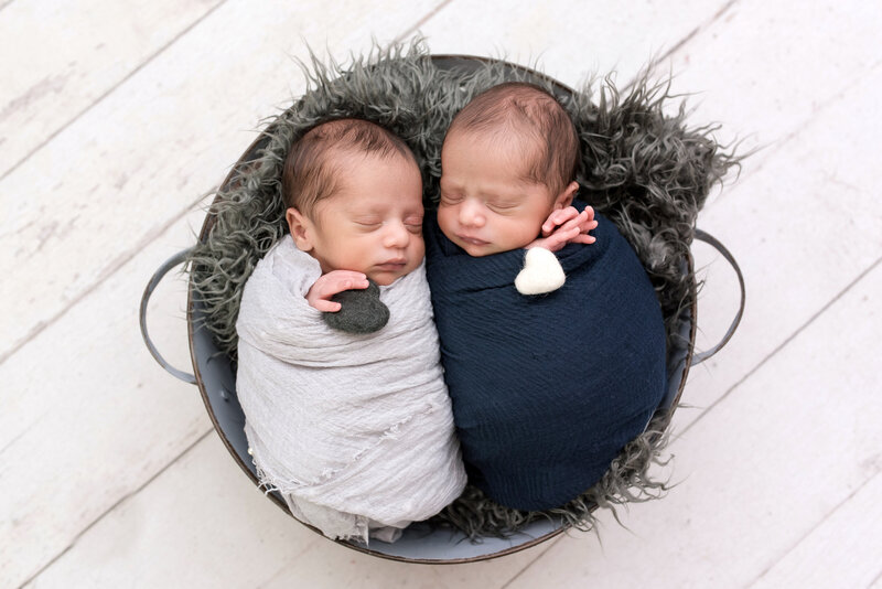 twin newborn boys photographed together