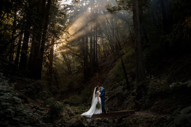 Saratoga Springs Forest Wedding CA
