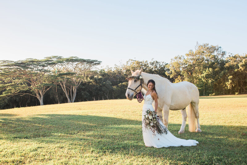 bride with white horse at sunset ranch hawaii