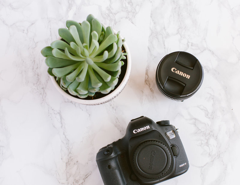Canon camera and Canon lens on desk with succulent